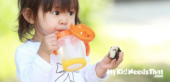 Best Sippy Cups For Toddlers To Consider In 2019