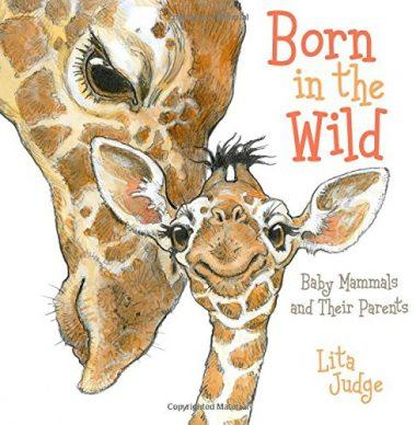 Born in the Wild: Baby Mammals and Their Parents by Lita Judge