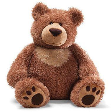 Teddy Bear Stuffed Animal