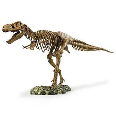 Edu-Toys  Science Tech T-Rex Skeleton by Elenco