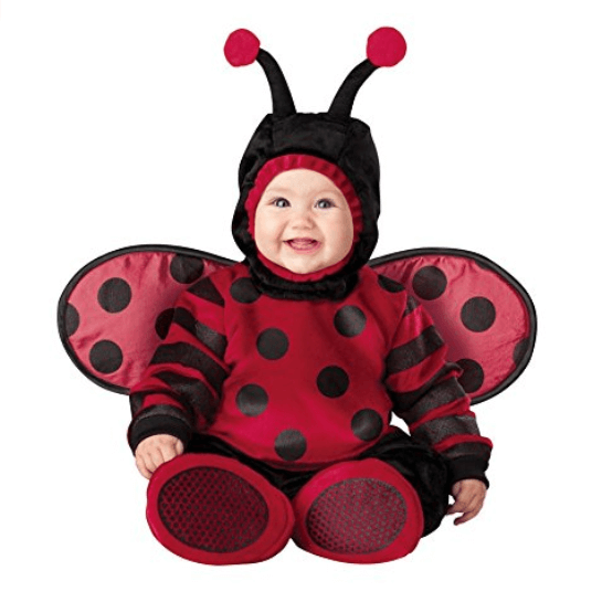 InCharacter Lady Bug Costume  sc 1 st  BornCute & Best Baby Costumes Reviewed u0026 Rated in 2018 | BornCute