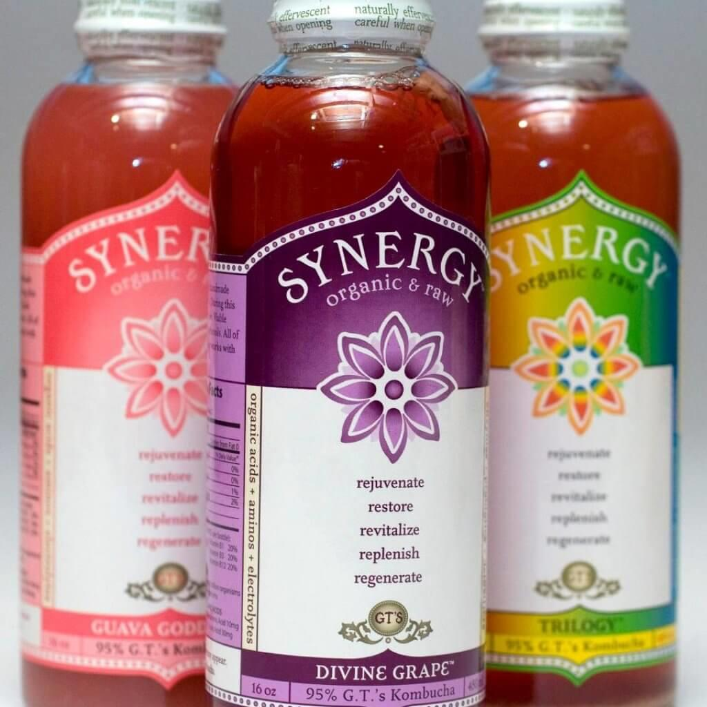 Synergy-Kombucha-Probiotic-Blog-Page