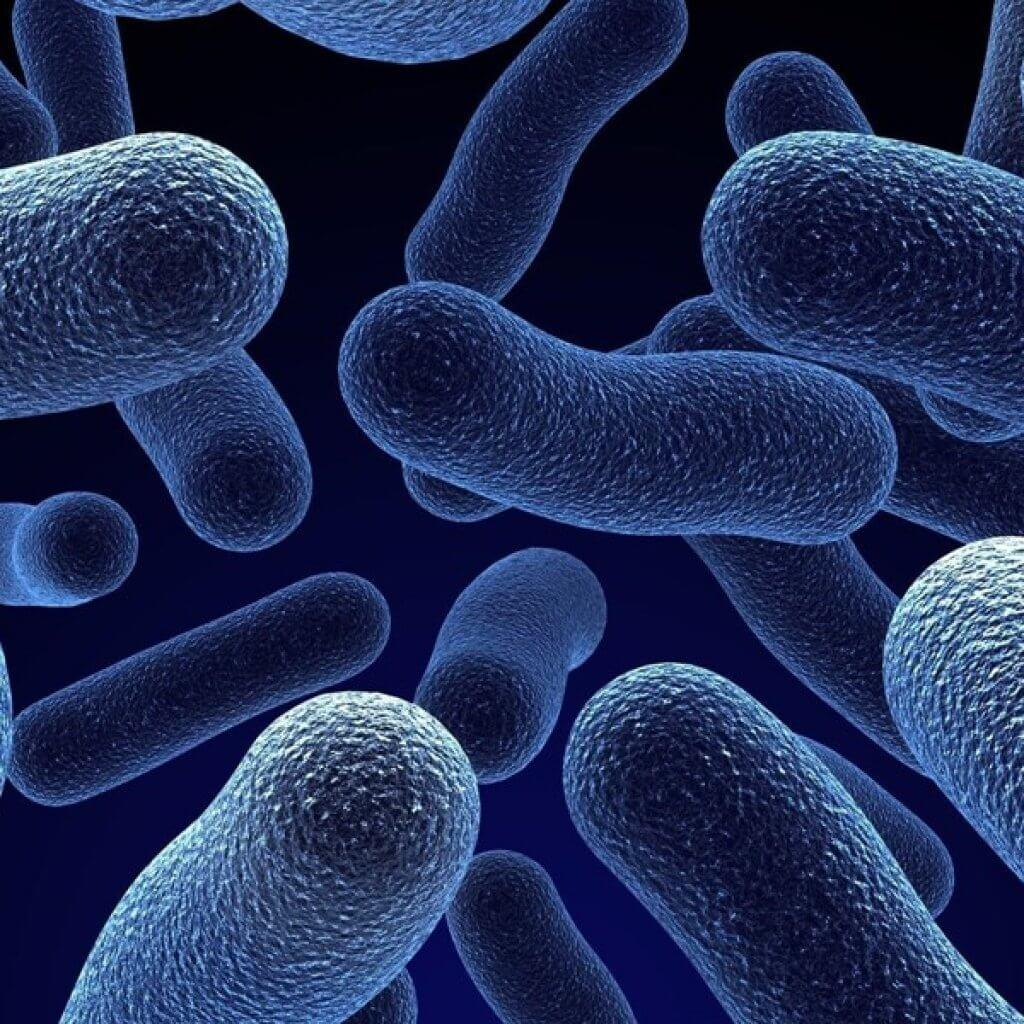 Kids-Gut-Bacteria-Probitotic-Blog-Page