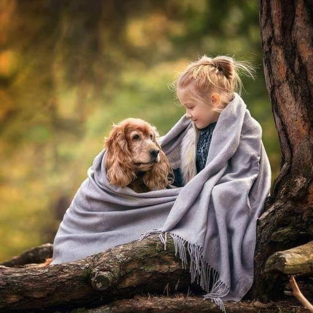 How to introduce your kids first dog mykidneedsthat for How to introduce a dog to a new dog