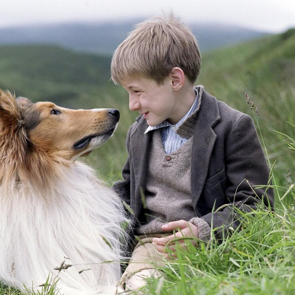Lassie-Family-Dog-Introduce-Kids-First-Dog-Blog-Page