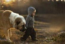 Little-Kid-Walking-With-Dog-Introduce-Kids-First-Blog-Page
