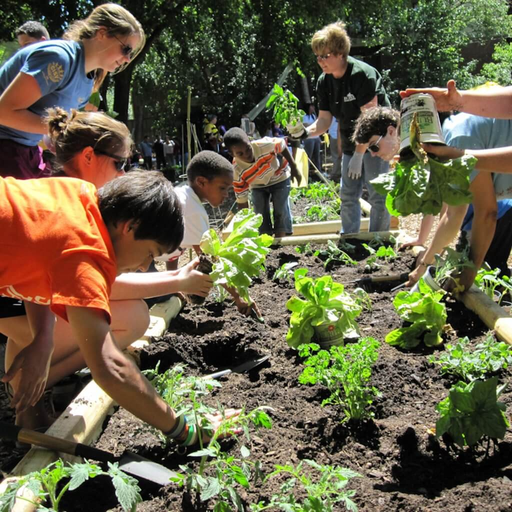 planting-garden-earth-day-blog-page
