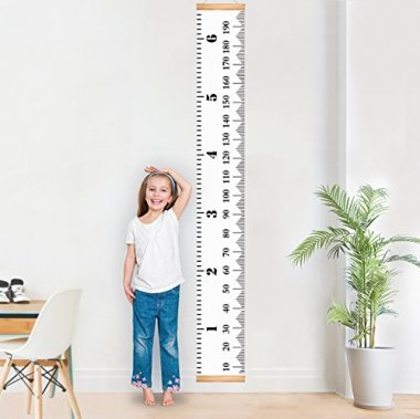 Baby Growth Chart Handing Ruler