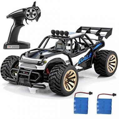 Distianert 1:16 Scale Electric RC Car