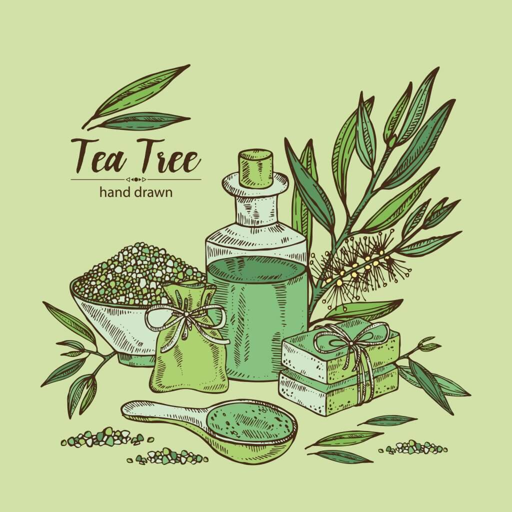 Tea-tree-oil-stretch-marks-blog-page