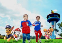 Let us help you find the best paw patrol trucks for kids.