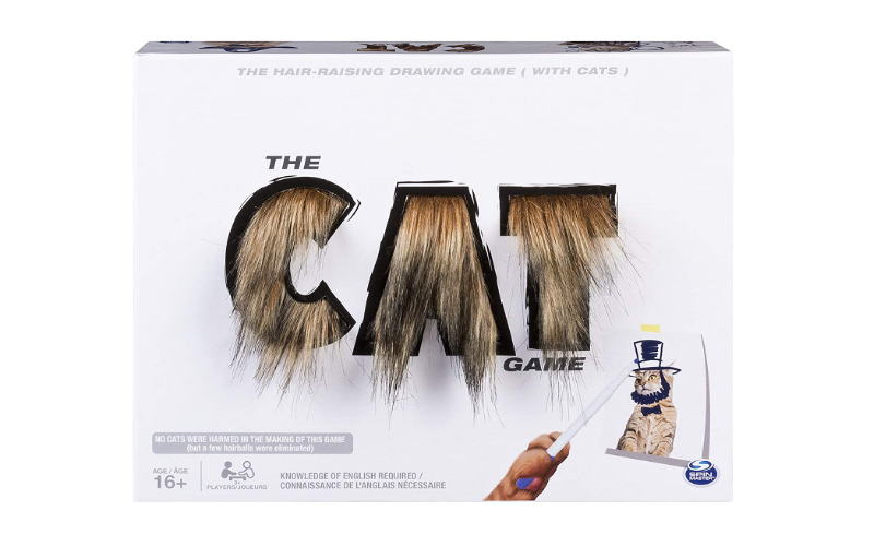 The Cat Game Drawing Game