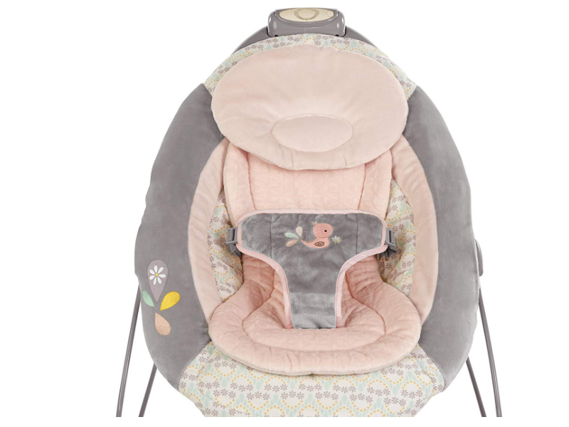 The Ingenuity Smartbounce Automatic Bouncer has a cute design.