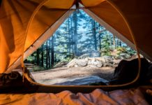 For an amazing camping experience, choose from the best family tents available on the market.