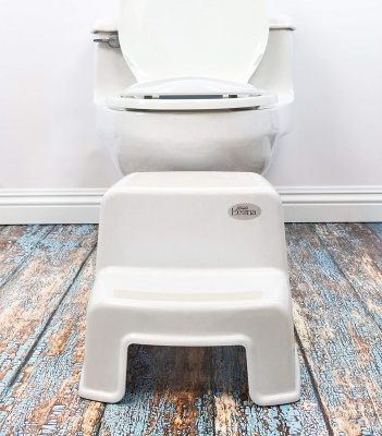 secure home dual height step stool potty