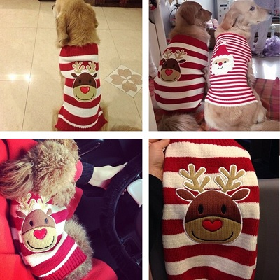 bobibi pet reindeer dog christmas sweater look