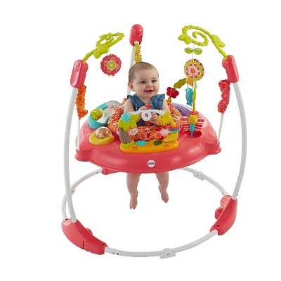 fisher-price pink petals jumperoo infant & baby jumper and bouncer baby