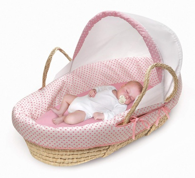 Baby Moses Basket Canopy Child