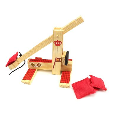 Boy Craft Catapult Wars game
