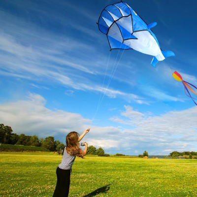 Top Rated Kites for Kids Reviewed in 2019 | BornCute