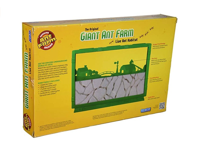 ncle Milton Ant Farm Kit will keep kids entertained for hours.