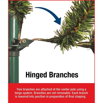 Carolina pine hinged branches