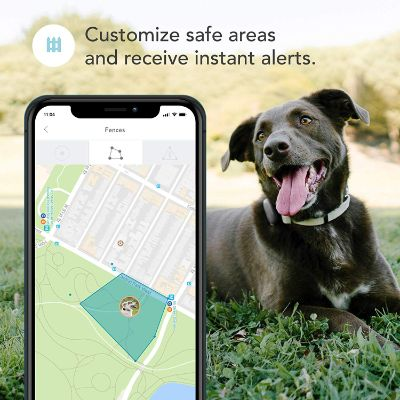 Findster Duo GPS Tracking Safe Areas