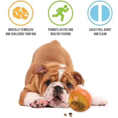 Our Pets IQ Interactive Toy Features