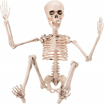 posable skeleton halloween decorations front