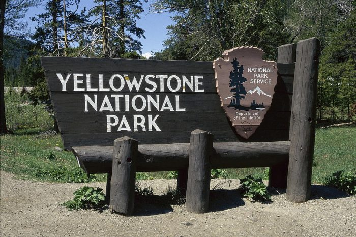yellowstone national park vitual tour