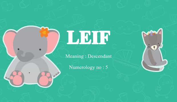 leif name meaning