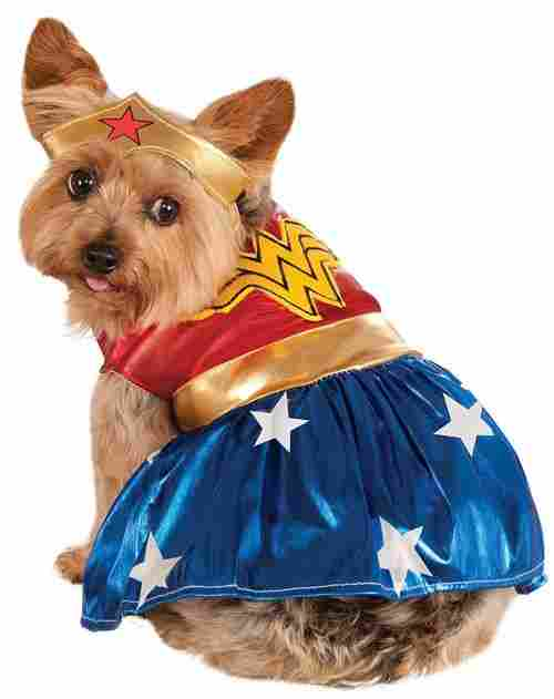 wonder woman halloween dog costume small