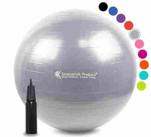 SmarterLife Products No Slip pregnancy ball
