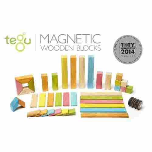 Tegu Magnetic Wooden Set