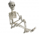 posable skeleton halloween decorations design