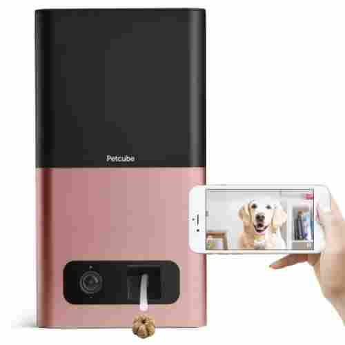 petcube bites pet camera 1080p
