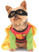 DC comics robin halloween dog costume design