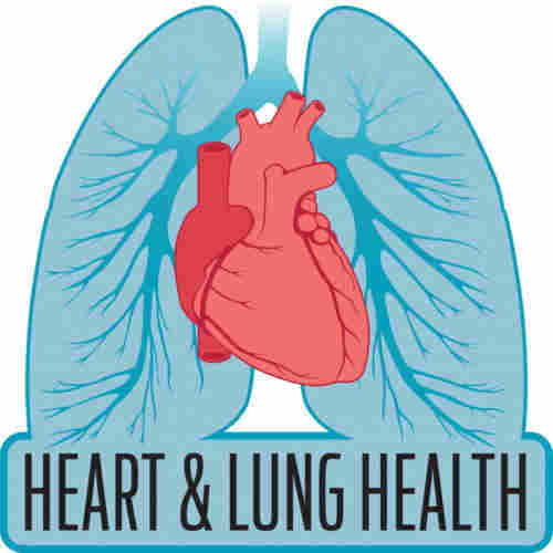 heart-lung-health-swimming-blog-page