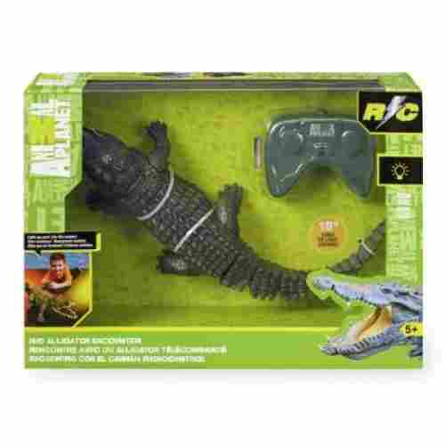 RC Alligator