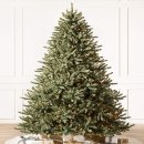 Balsam Hill Blue Spruce 6.5'