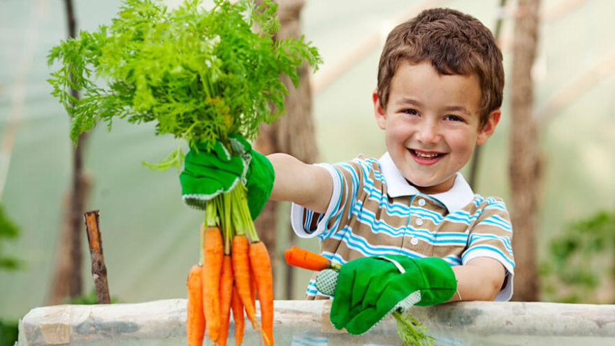 Having a Garden Can Help Your Child Grow