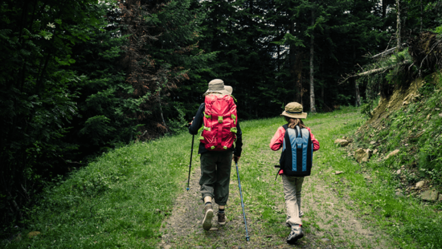 Choosing the Right Hiking Gear for Kids