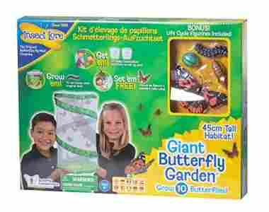 Insect Lore Giant Deluxe 18″