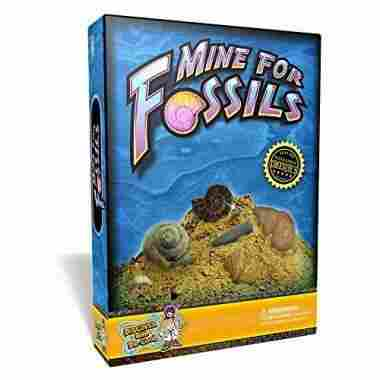 Mine for Fossils Science Kit by Discover with Dr. Cool