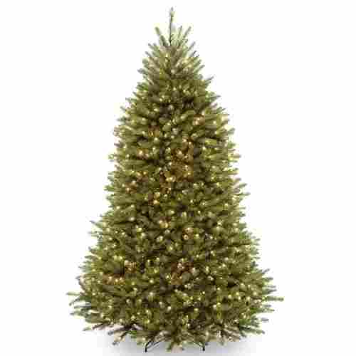National Tree Company Dunhill Fir