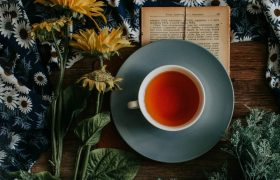 10 Best Lactation Tea Reviewed in 2020