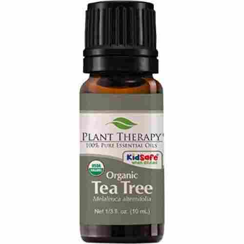 Plant Therapy Tea Tree Melaleuca