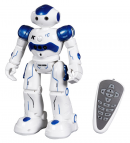 Toch RC Robot Toy
