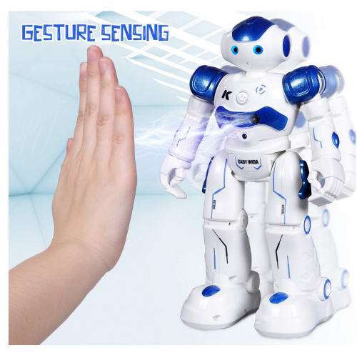 Toch RC Robot Toy 2