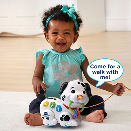 Vtech Pull and Sing Puppy 3